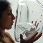 Hevder honningbier oppdager kreft iløpet av ti minutter