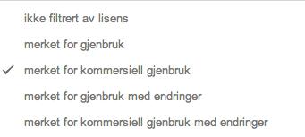 Foto: Google / Skjermdump