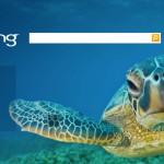 Microsoft vil ikke satse mer på Bing