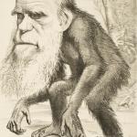Teknologisk Darwinisme